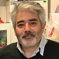 avatar de Patrick Trieu-Cuot